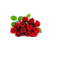 Archies Simple Dozen 139M Flower Bouquet