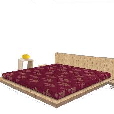 Sleepwell Spinetec Air Foam Mattress Price Specification
