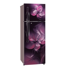 LG GL T302RPDN 284L Double Door Refrigerator